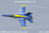 A Blue Angels solo at the 2008 Great Tennessee Air Show practice show at Smyrna aviation stock photo #1575