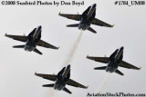 The Blue Angels at the 2008 Great Tennessee Air Show at Smyrna aviation stock photo #1784