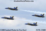 The Blue Angels at the 2008 Great Tennessee Air Show at Smyrna aviation stock photo #1795