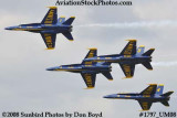 The Blue Angels at the 2008 Great Tennessee Air Show at Smyrna aviation stock photo #1797