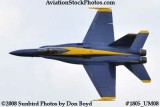 One of the Blue Angels at the 2008 Great Tennessee Air Show at Smyrna aviation stock photo #1805