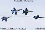 The Blue Angels at the 2008 Great Tennessee Air Show at Smyrna aviation stock photo #1819