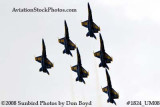 The Blue Angels at the 2008 Great Tennessee Air Show at Smyrna aviation stock photo #1824