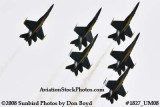 The Blue Angels at the 2008 Great Tennessee Air Show at Smyrna aviation stock photo #1827