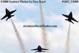 The Blue Angels at the 2008 Great Tennessee Air Show at Smyrna aviation stock photo #1831