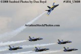 The Blue Angels at the 2008 Great Tennessee Air Show at Smyrna aviation stock photo #1834
