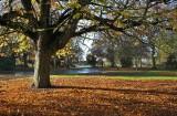 East Park autumn003.jpg