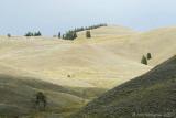 Yellowstone Hills