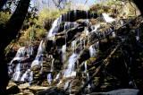 Yellow Branch Falls SC.