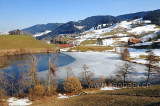 Wilersee (92781)
