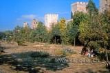 Stadtmauer (17)