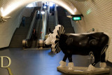 #19 Cow-mões by Joana Saraiva (Flora)