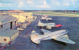 Early 1950's - Pan American Curtiss C-46F-1-CU N74179 at the 36th Street Terminal, Miami