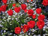 Butchart Gardens, B.C., Canon S90 -- May 2010