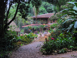 Belize - Caves Branch