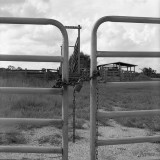 chained gate
