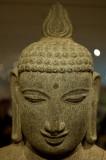 Buddha Looks Down