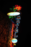 Hollywood Downtowner Neon