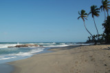 Driving to the Grande Riviere, we stopped at a beach