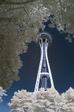 Space Needle in Infrared