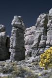 Rock pillar in Arches.
