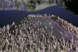 Crater Lake, Nikon d70 720 Infrared