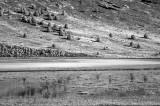 Mann Lake.