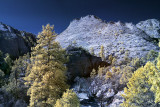 Zion National Park. This is a four shot merged photo.