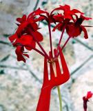 Flower&Fork