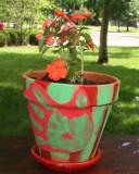 andrew's flower pot