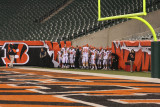 at paul brown stadium