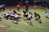 redskin defense