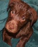 hannah's first bath