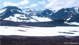 view along the Taylor Road, far w. Alaska