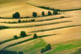 Streaked Fields