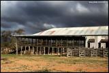 7032- kinchega historical woolshed near Menindee