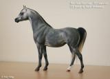 0006- A Breyer Proud Arabian Mare customised by Sarah Minkiewicz, USA