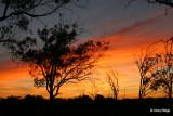 0055-kulcurna-sunrise.jpg