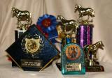 some of Mon Nafa Rani's awards won over the years
