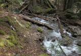 Beaver Bill Creek crossing
