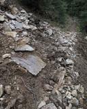 Rock Slide on Packwood Lake Trail, Looking West
