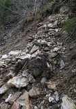 Rock Slide on Packwood Lake Trail, Looking up hill