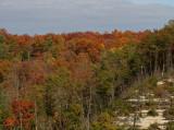 Tunnel Ridge Road Overlook