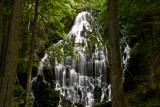Ramona Falls Hike