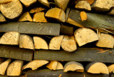 Lime Wood Log Pile