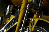 Harleys Close-up