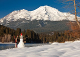 Shasta Greetings!  Christmas Cards and Prints