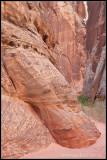 _ADR6698 canyon wf.jpg
