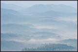 _ADR9900 foothills cwf.jpg