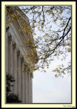 Jefferson Memorial 23